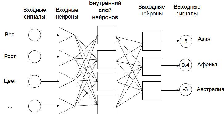 Нейронная сеть с входом и выходом